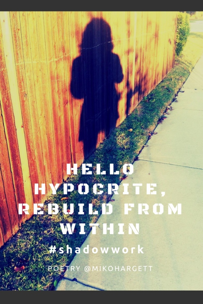 Woman's shadow against a wooden fence - Hello hypocrite, rebuild from within
